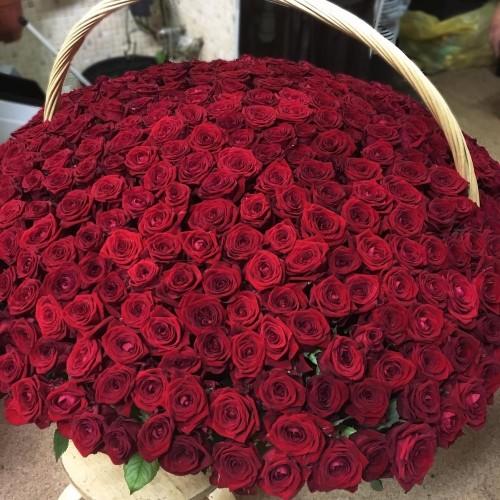 Купить на заказ 1001 роза с доставкой в Шаре