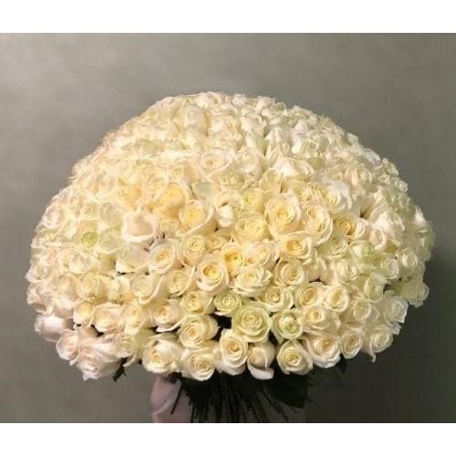 Купить на заказ 201 роза с доставкой в Шаре