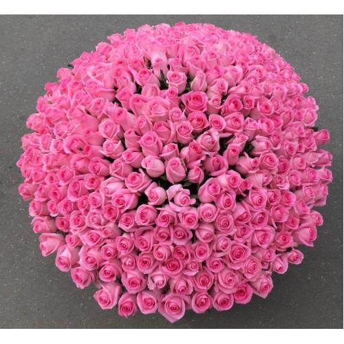 Купить на заказ 501  роза с доставкой в Шаре